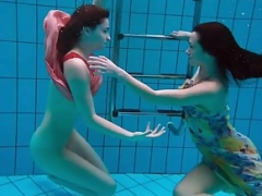 Bubarek and Birtakik admire eachother in the pool
