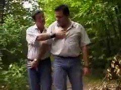 Slightly fat bears in woods