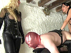 dominatrixes use their sub