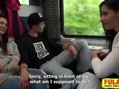Czech couples have an intercourse in train