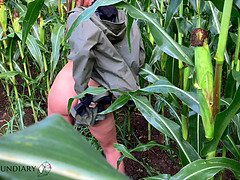 Public raincoat porno in a cornfield - projectsexdiary